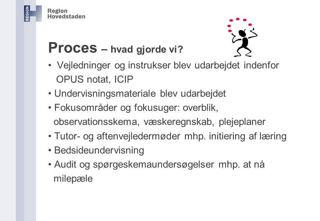 Proces – hvad gjorde vi Vejledninger og instrukser blev udarbejdet indenfor. OPUS notat, ICIP. Undervisningsmateriale blev udarbejdet.