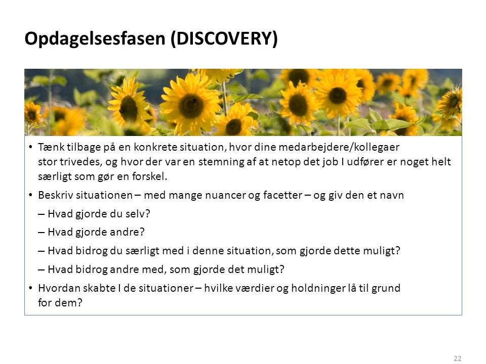 Opdagelsesfasen (DISCOVERY)