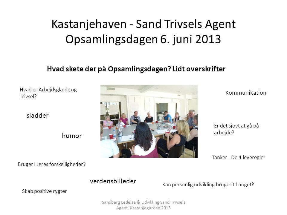 Kastanjehaven - Sand Trivsels Agent Opsamlingsdagen 6. juni 2013