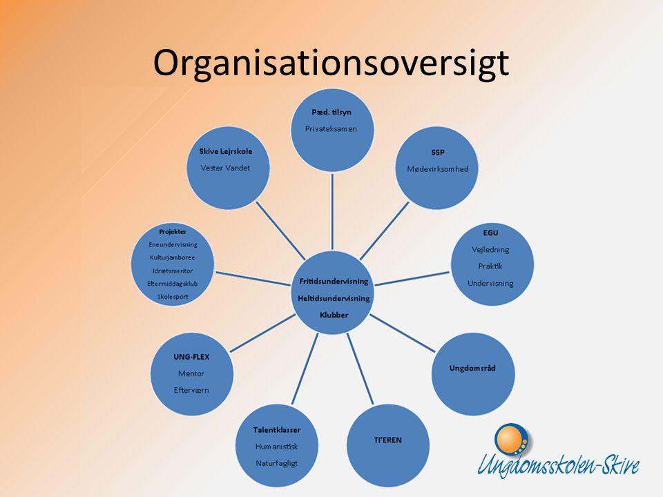 Organisationsoversigt