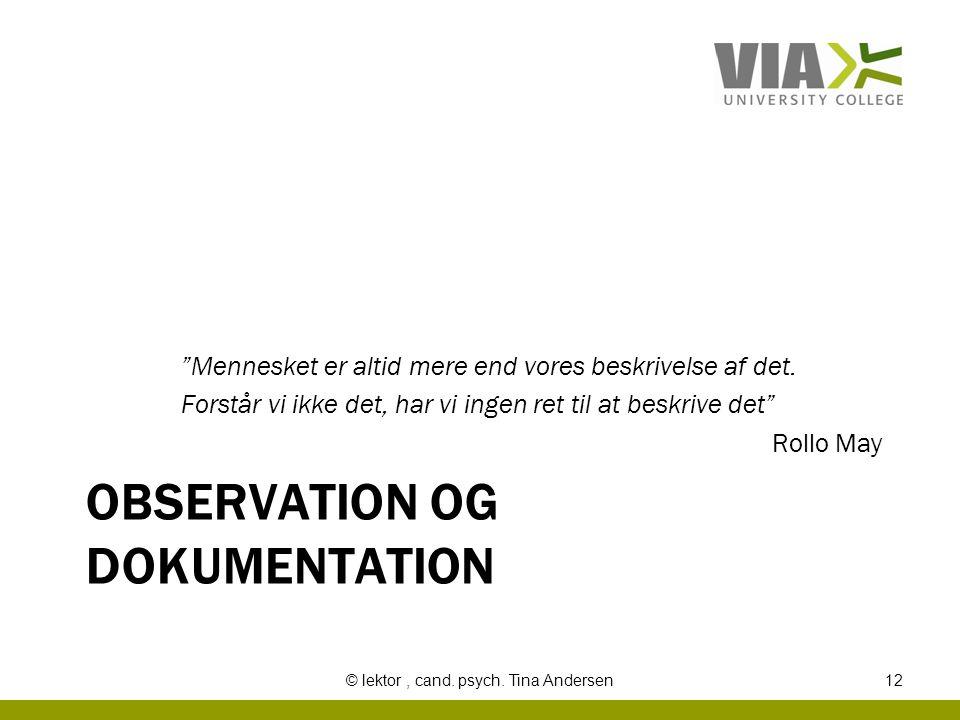 observation og dokumentation
