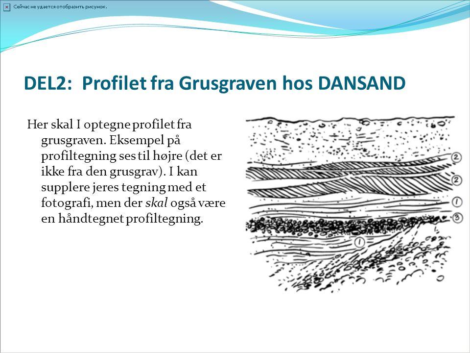 DEL2: Profilet fra Grusgraven hos DANSAND