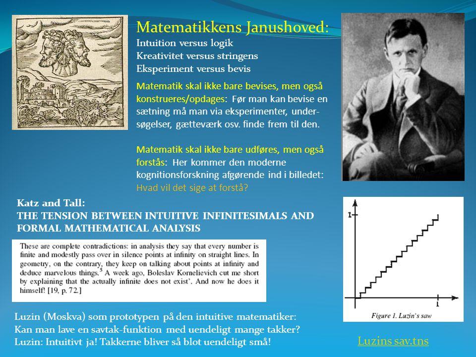 Matematikkens Janushoved: