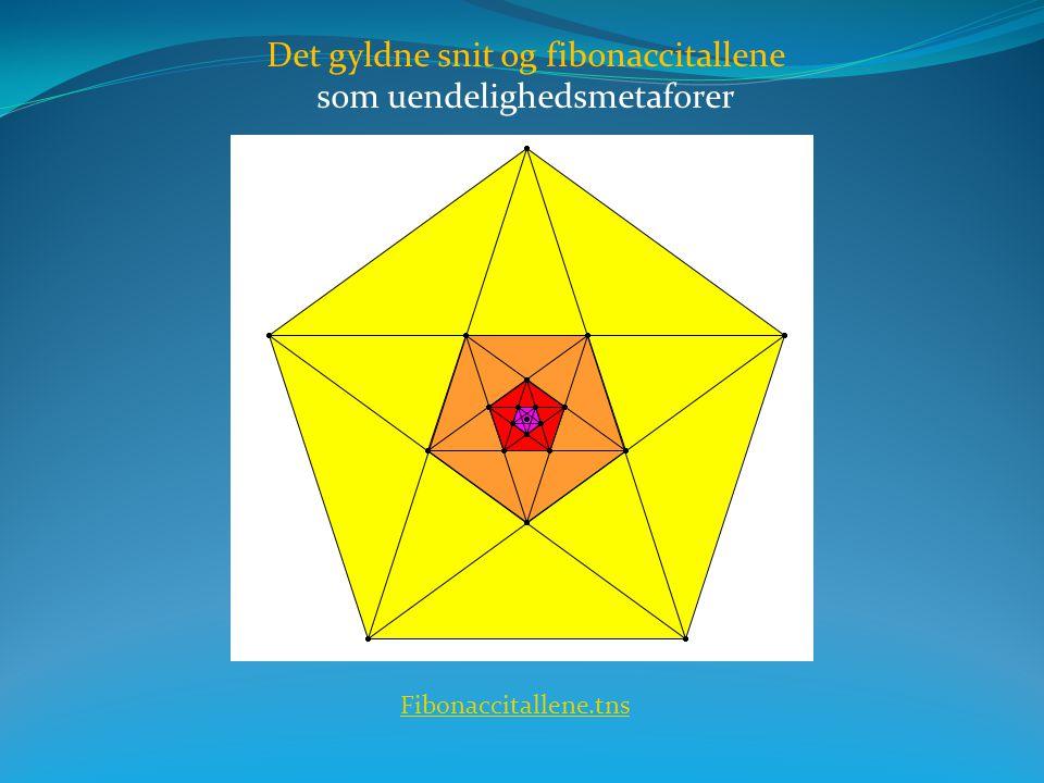 Det gyldne snit og fibonaccitallene som uendelighedsmetaforer