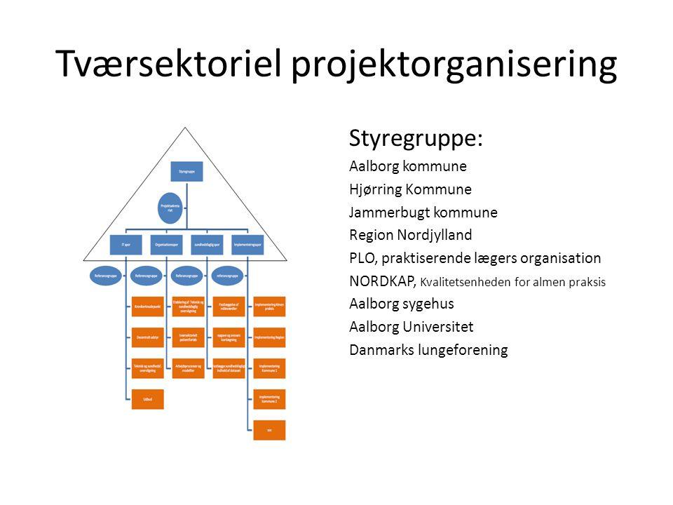 Tværsektoriel projektorganisering
