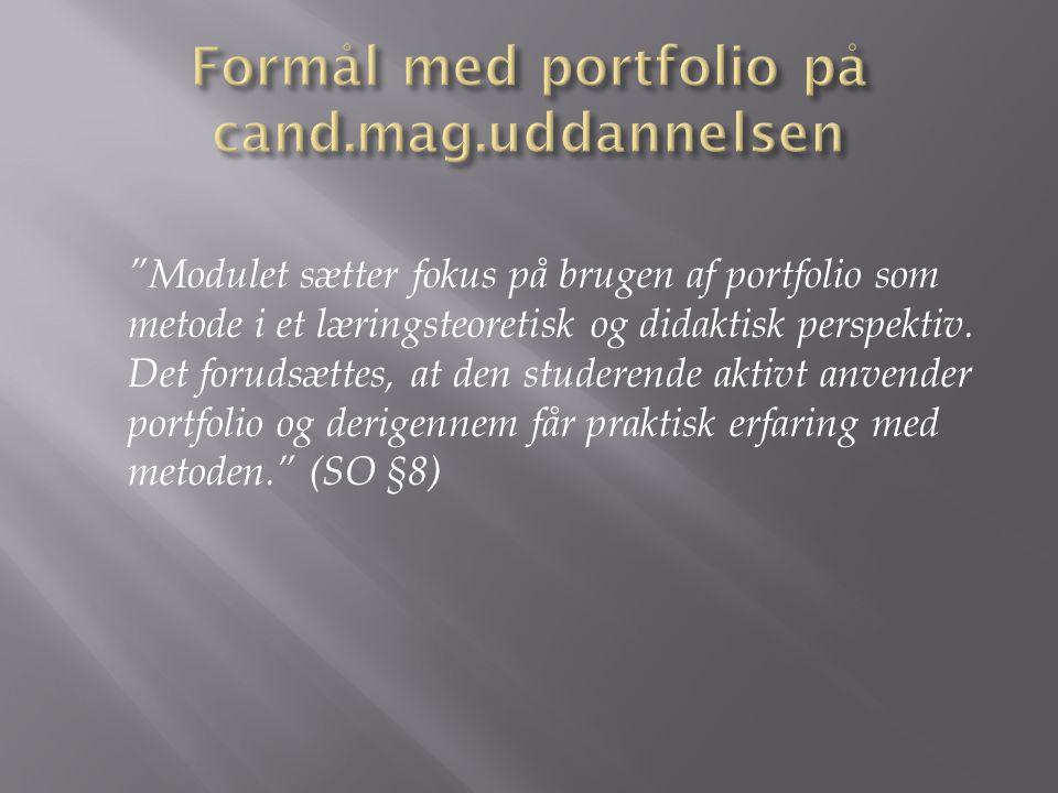 Formål med portfolio på cand.mag.uddannelsen