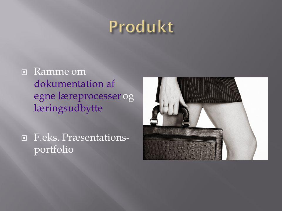 Produkt Ramme om dokumentation af egne læreprocesser og læringsudbytte