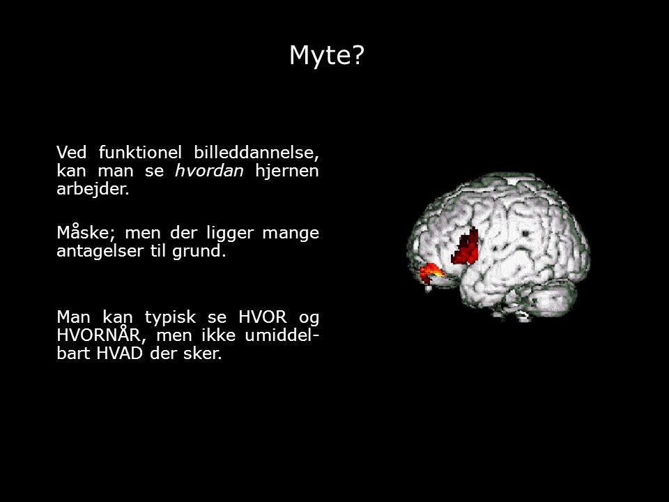 Myte Ved funktionel billeddannelse, kan man se hvordan hjernen arbejder. Måske; men der ligger mange antagelser til grund.
