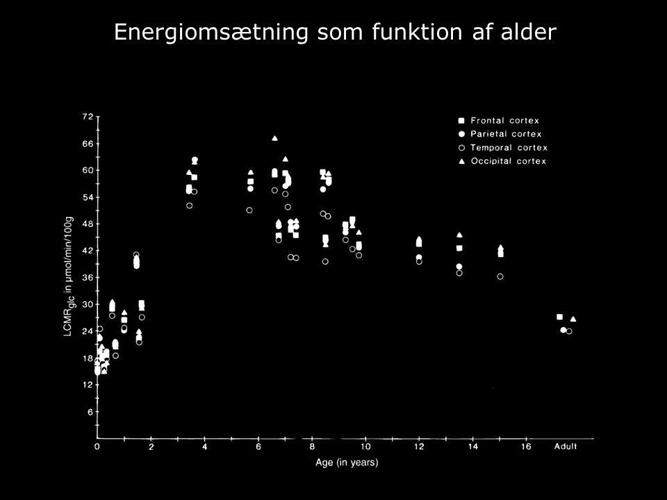 Energiomsætning som funktion af alder