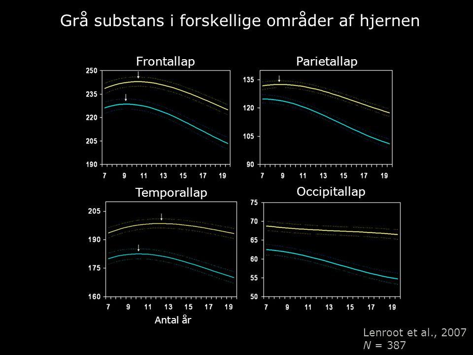 Grå substans i forskellige områder af hjernen