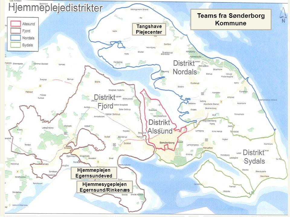Teams fra Sønderborg Kommune