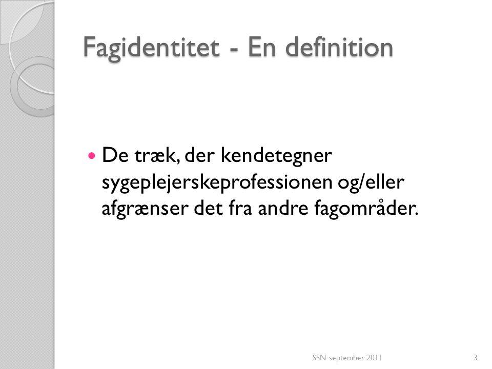 Fagidentitet - En definition