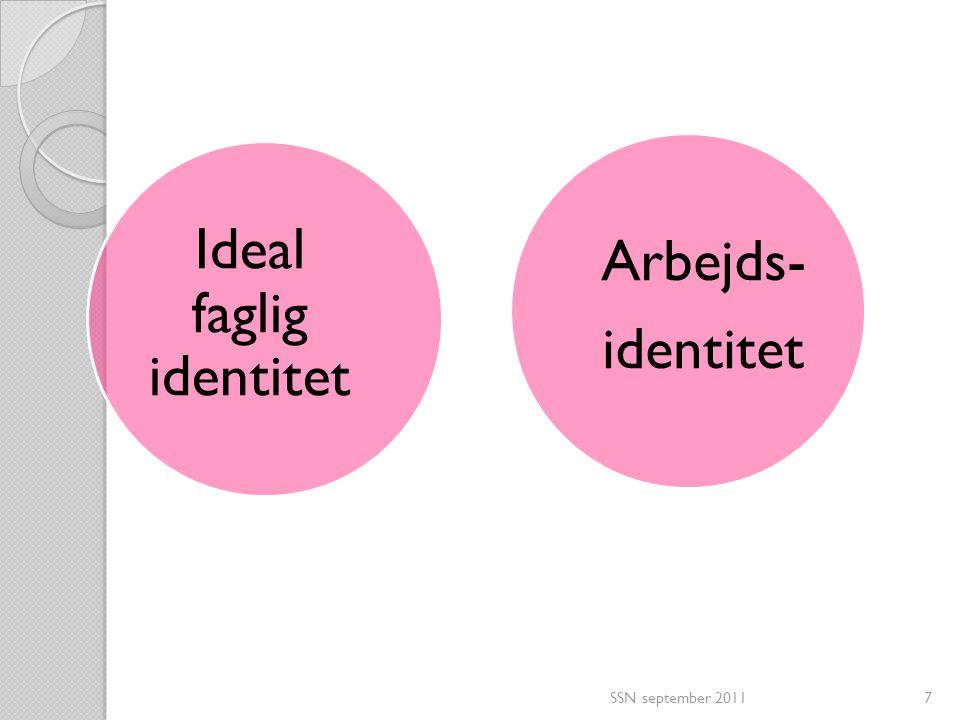 Ideal faglig identitet
