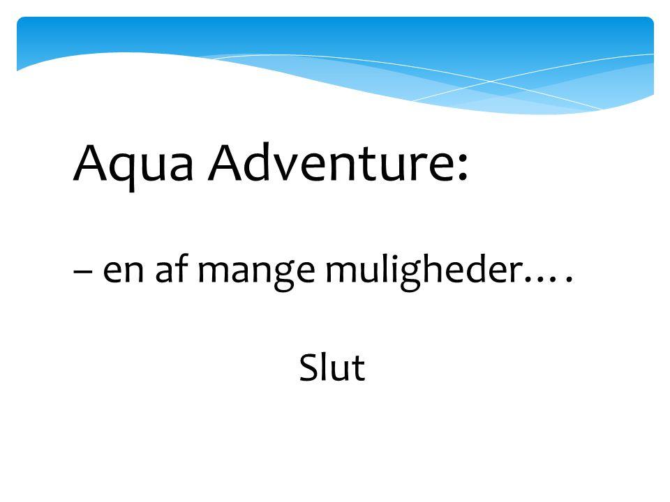 Aqua Adventure: – en af mange muligheder…. Slut