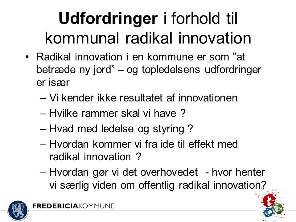 Udfordringer i forhold til kommunal radikal innovation
