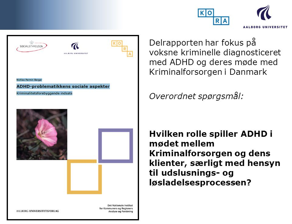 Delrapporten har fokus på voksne kriminelle diagnosticeret med ADHD og deres møde med Kriminalforsorgen i Danmark