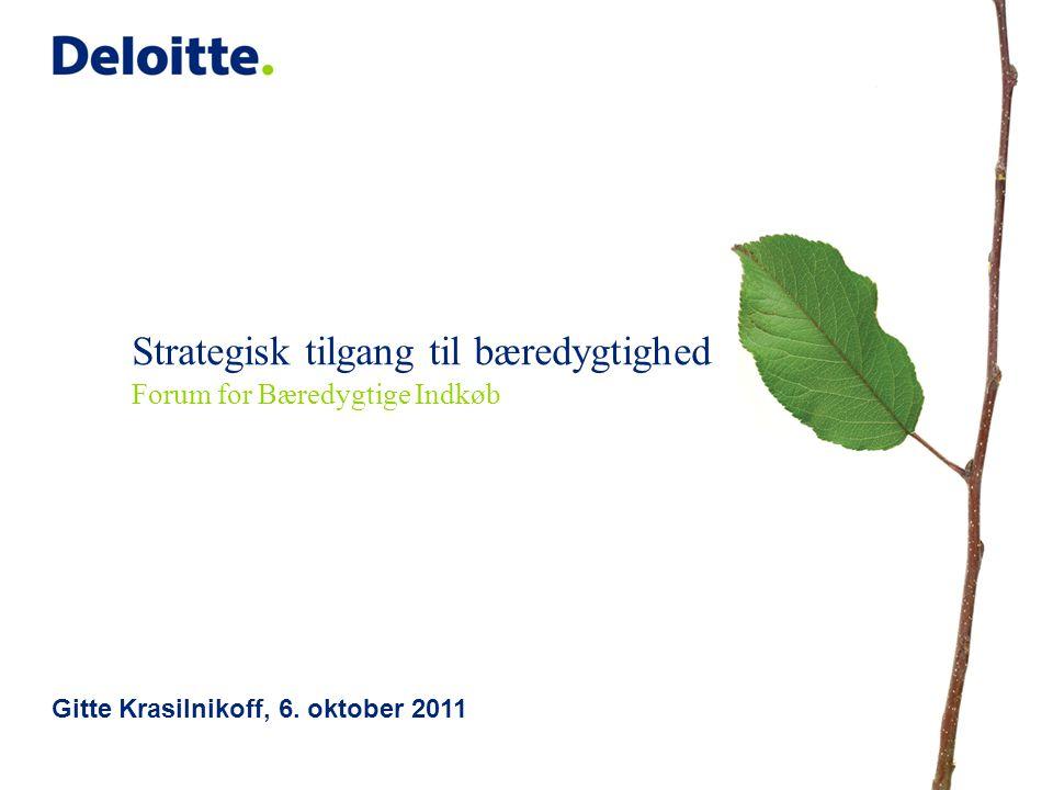 Strategisk tilgang til bæredygtighed