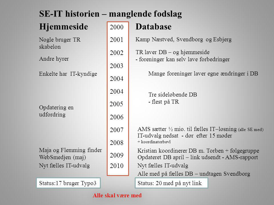 SE-IT historien – manglende fodslag Hjemmeside Database