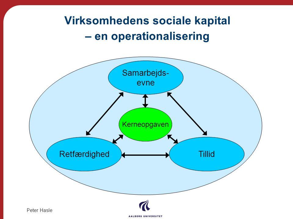 Virksomhedens sociale kapital – en operationalisering