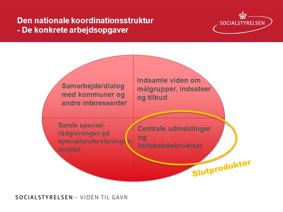 Den nationale koordinationsstruktur - De konkrete arbejdsopgaver