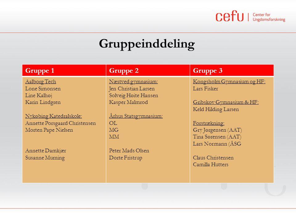 Gruppeinddeling Gruppe 1 Gruppe 2 Gruppe 3 Aalborg Tech Lone Simonsen