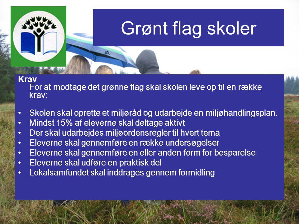 Grønt flag skoler Krav For at modtage det grønne flag skal skolen leve op til en række krav: