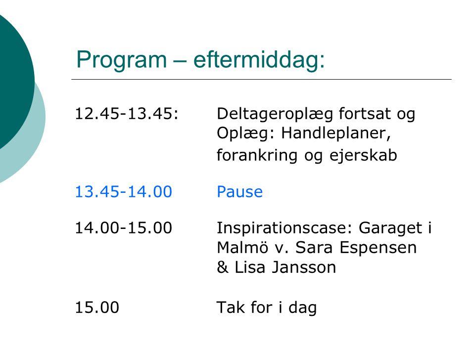 Program – eftermiddag:
