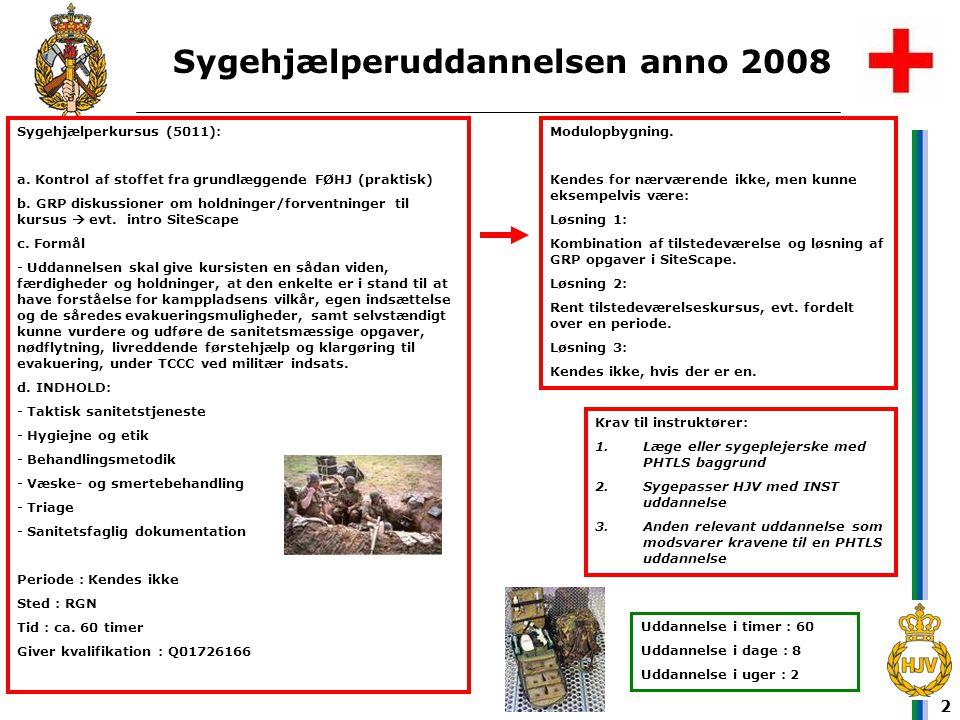 Sygehjælperuddannelsen anno 2008