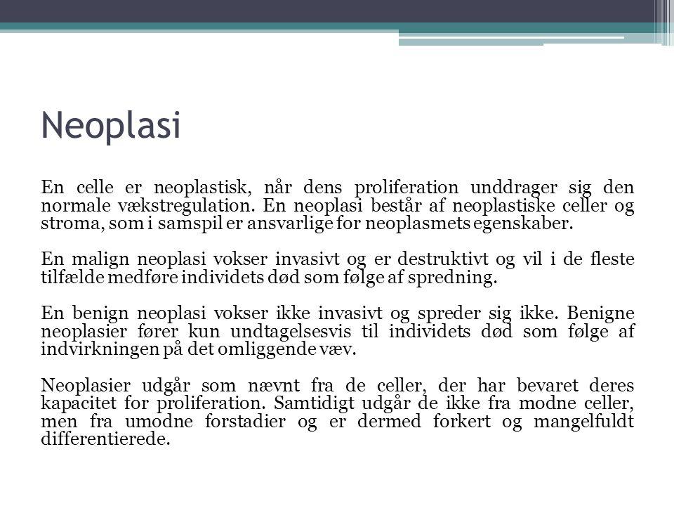 Neoplasi