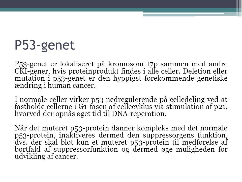 P53-genet