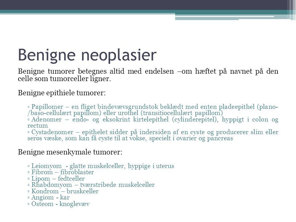 Benigne neoplasier Benigne tumorer betegnes altid med endelsen –om hæftet på navnet på den celle som tumorceller ligner.