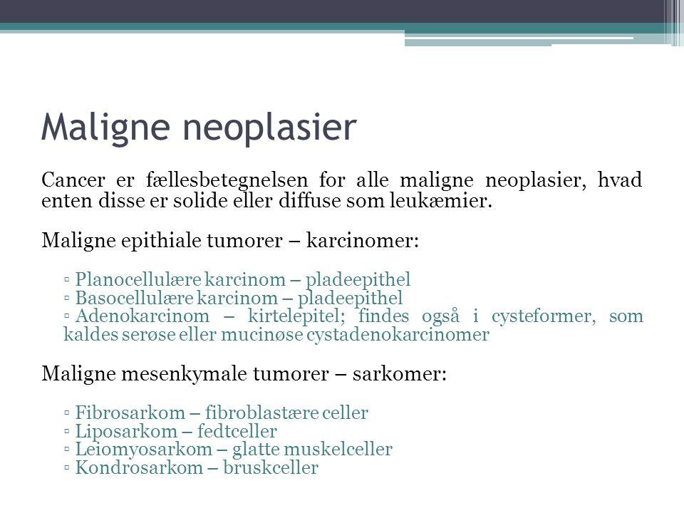 Maligne neoplasier Cancer er fællesbetegnelsen for alle maligne neoplasier, hvad enten disse er solide eller diffuse som leukæmier.