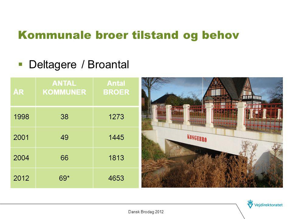 Kommunale broer tilstand og behov