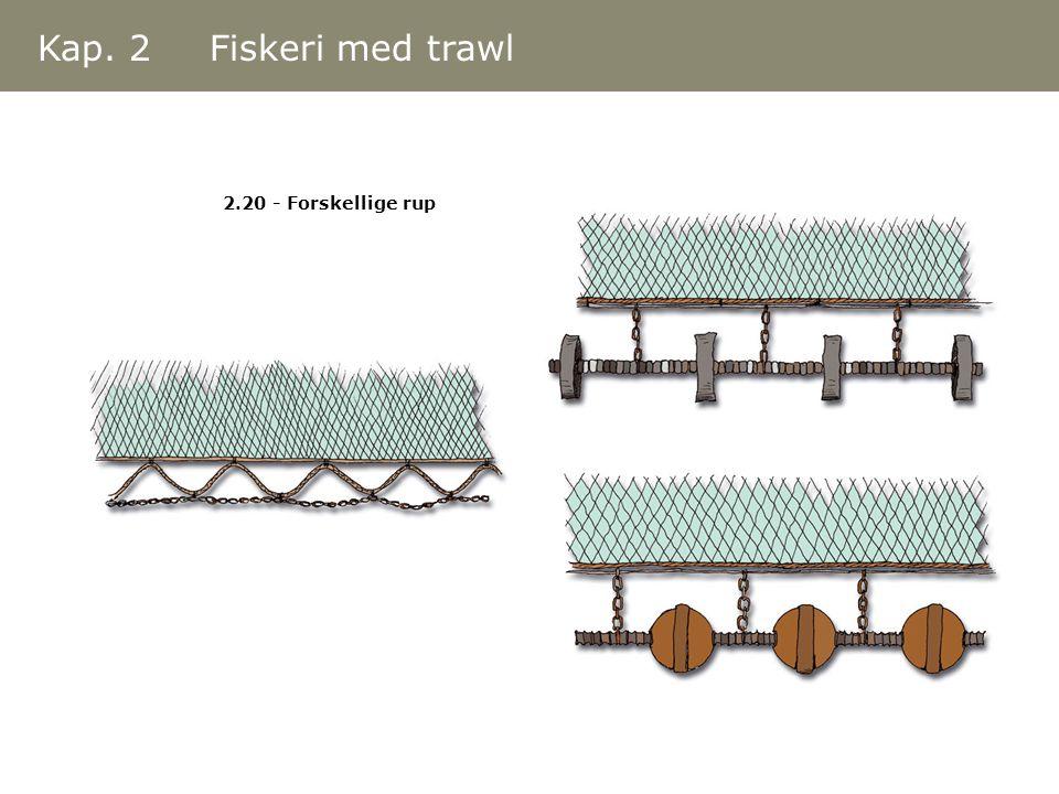 Kap. 2 Fiskeri med trawl 2.20 - Forskellige rup