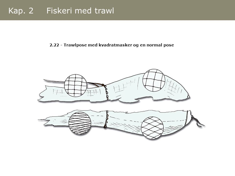 Kap. 2 Fiskeri med trawl 2.22 - Trawlpose med kvadratmasker og en normal pose