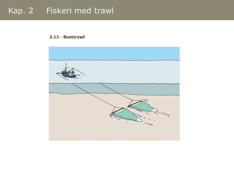 Kap. 2 Fiskeri med trawl 2.13 - Bomtrawl