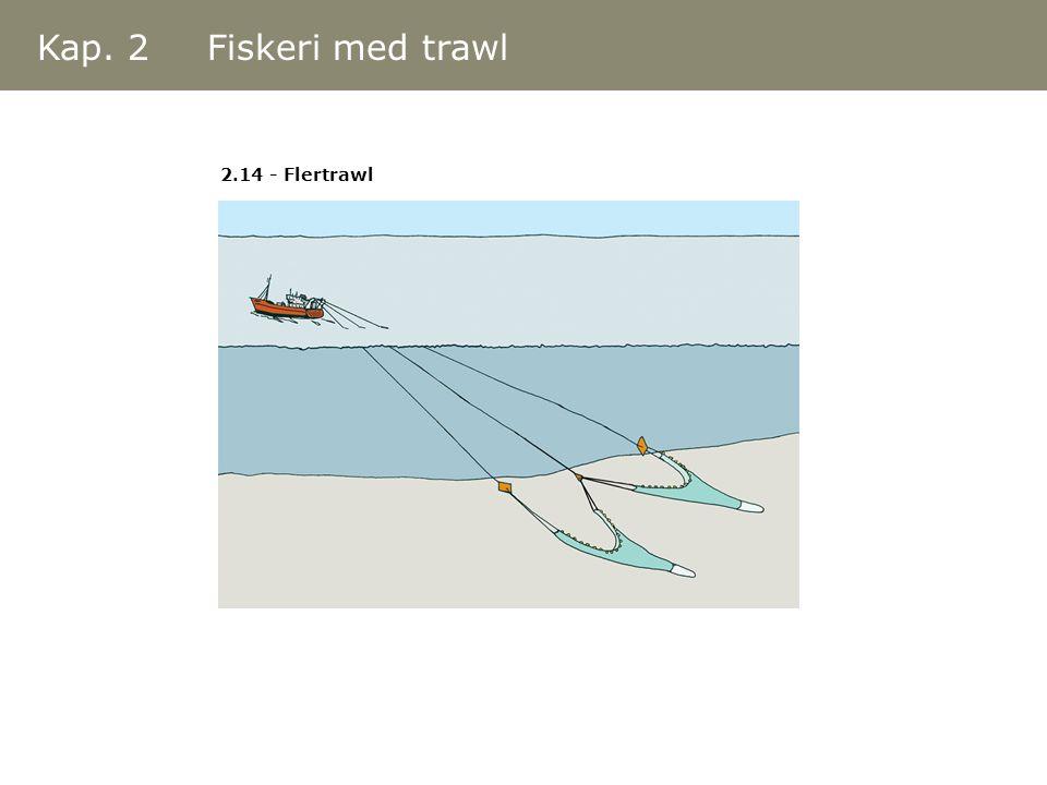 Kap. 2 Fiskeri med trawl 2.14 - Flertrawl