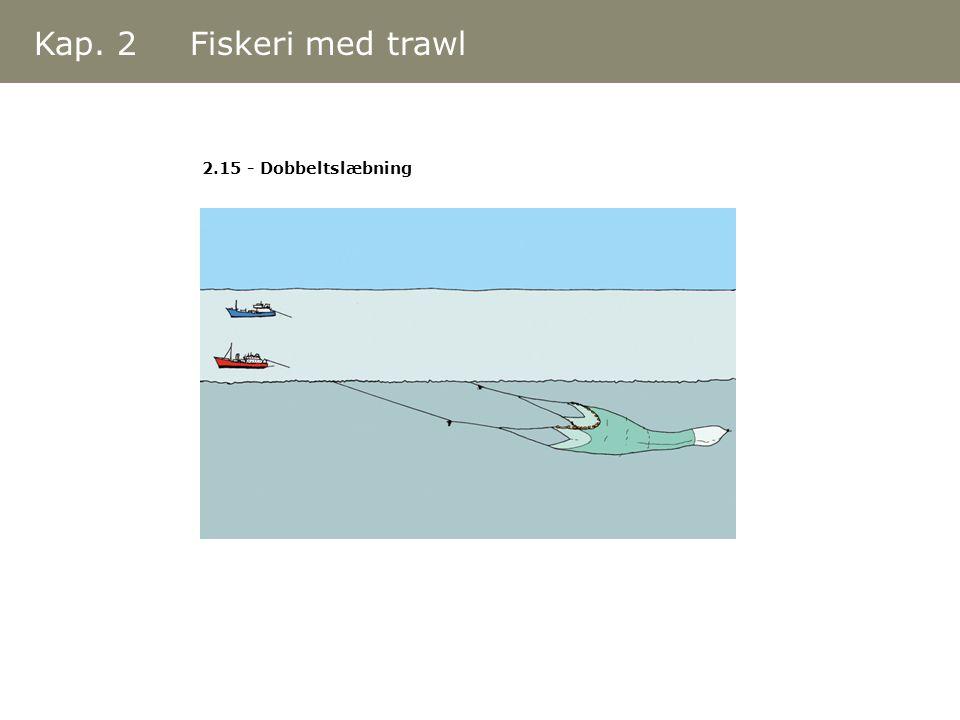 Kap. 2 Fiskeri med trawl 2.15 - Dobbeltslæbning
