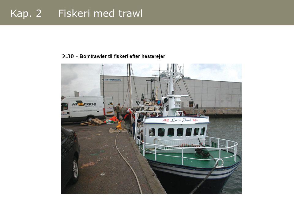 Kap. 2 Fiskeri med trawl 2.30 - Bomtrawler til fiskeri efter hesterejer