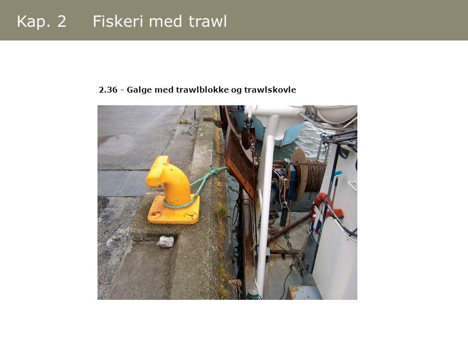 Kap. 2 Fiskeri med trawl 2.36 - Galge med trawlblokke og trawlskovle