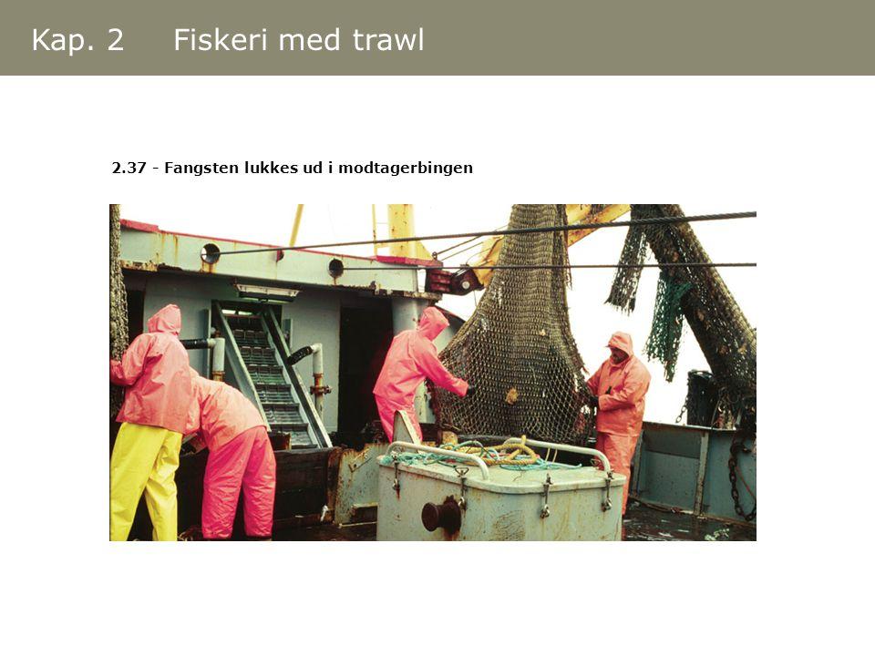 Kap. 2 Fiskeri med trawl 2.37 - Fangsten lukkes ud i modtagerbingen