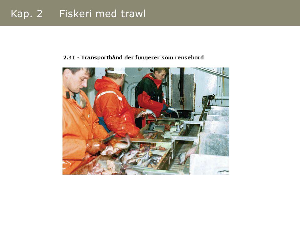 Kap. 2 Fiskeri med trawl 2.41 - Transportbånd der fungerer som rensebord