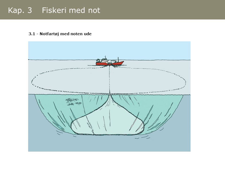 Kap. 3 Fiskeri med not 3.1 - Notfartøj med noten ude