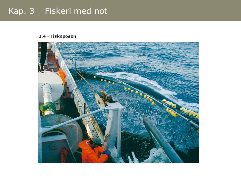 Kap. 3 Fiskeri med not 3.4 - Fiskeposen