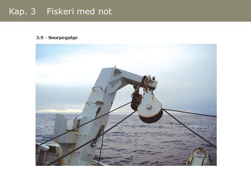 Kap. 3 Fiskeri med not 3.9 - Snurpegalge