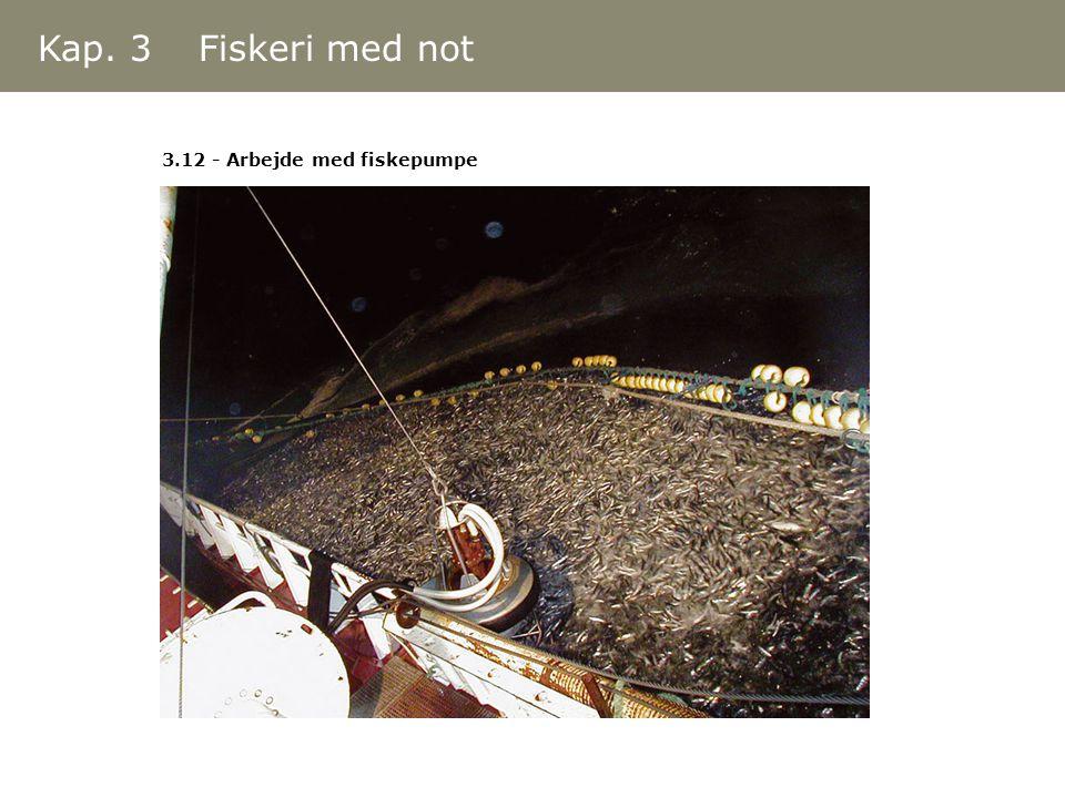 Kap. 3 Fiskeri med not 3.12 - Arbejde med fiskepumpe