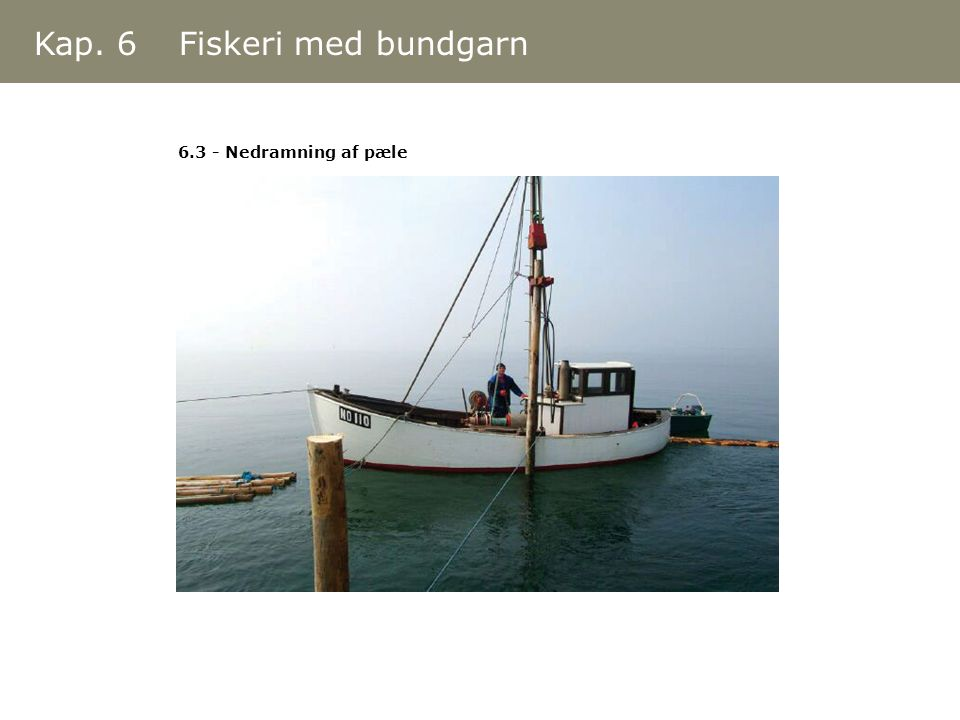 Kap. 6 Fiskeri med bundgarn