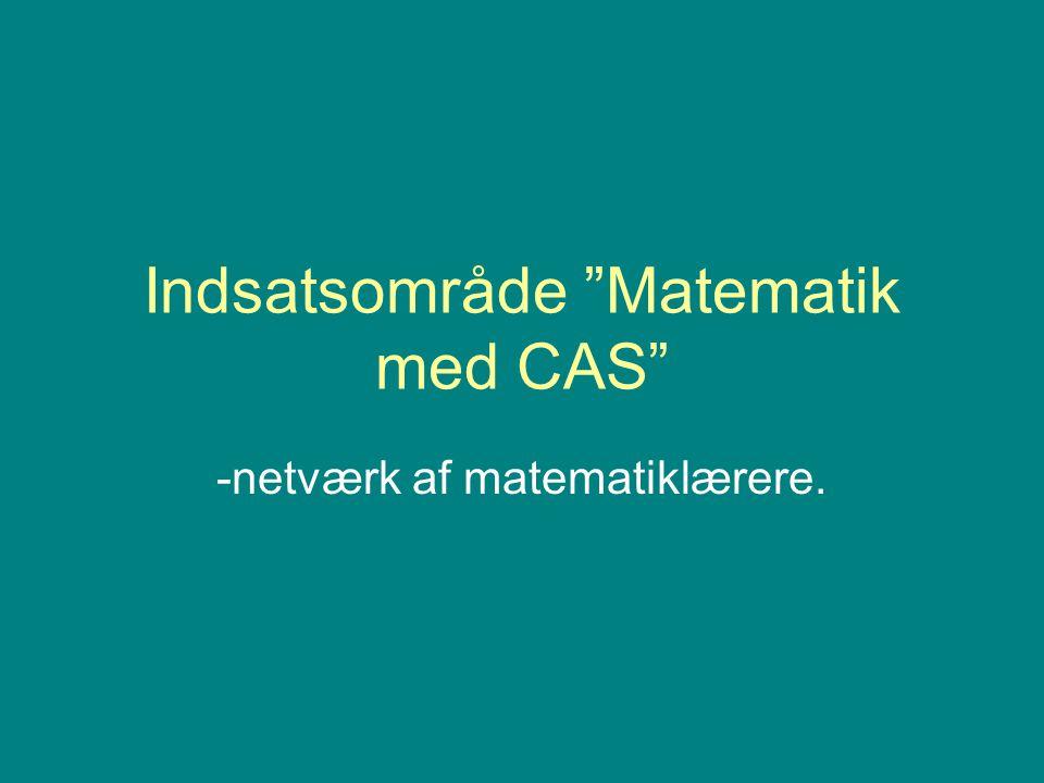 Indsatsområde Matematik med CAS