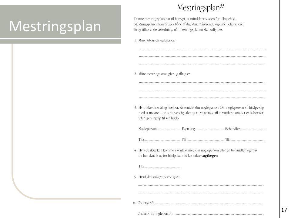Mestringsplan 17