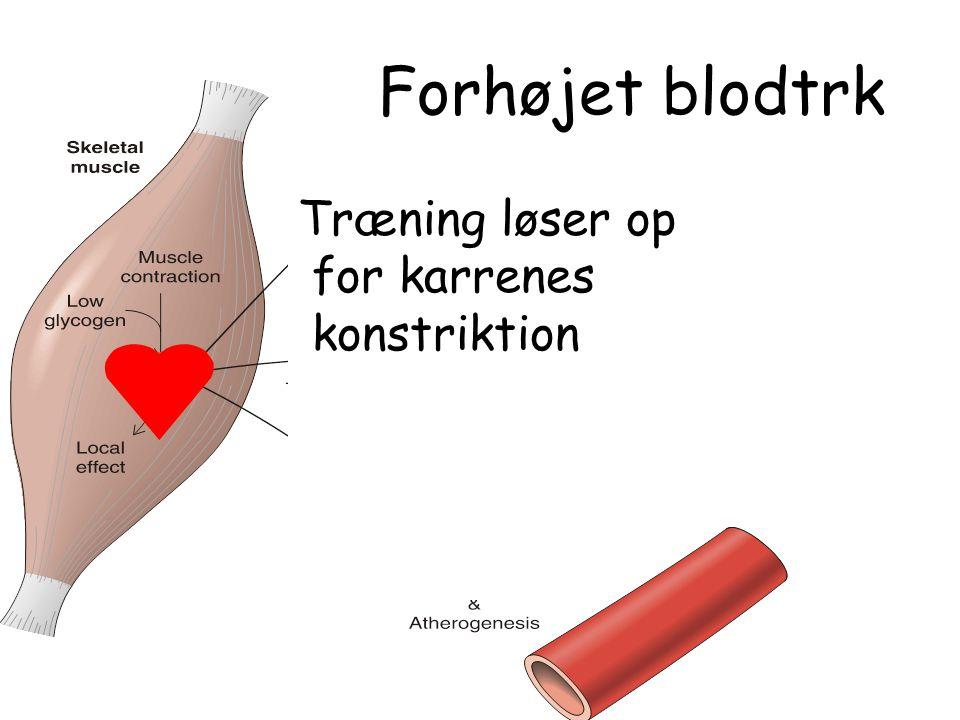 Forhøjet blodtrk Træning løser op for karrenes konstriktion X